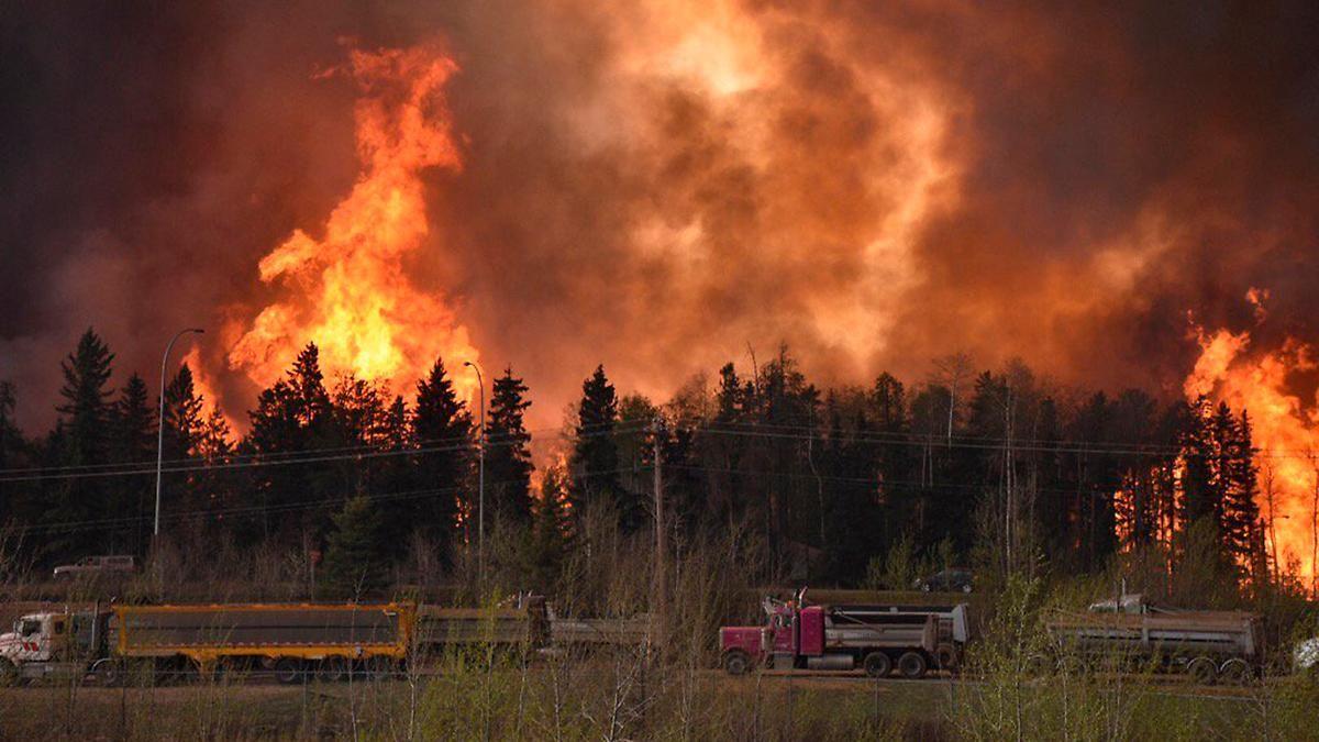 Dachdecker Kanada rekorddürre in kanada waldbrand treibt 80 000 menschen in die flucht