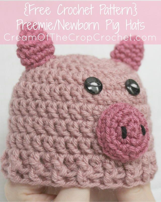 Preemie/Newborn Pig Hat | Preemies, Crochet and Crochet hooks
