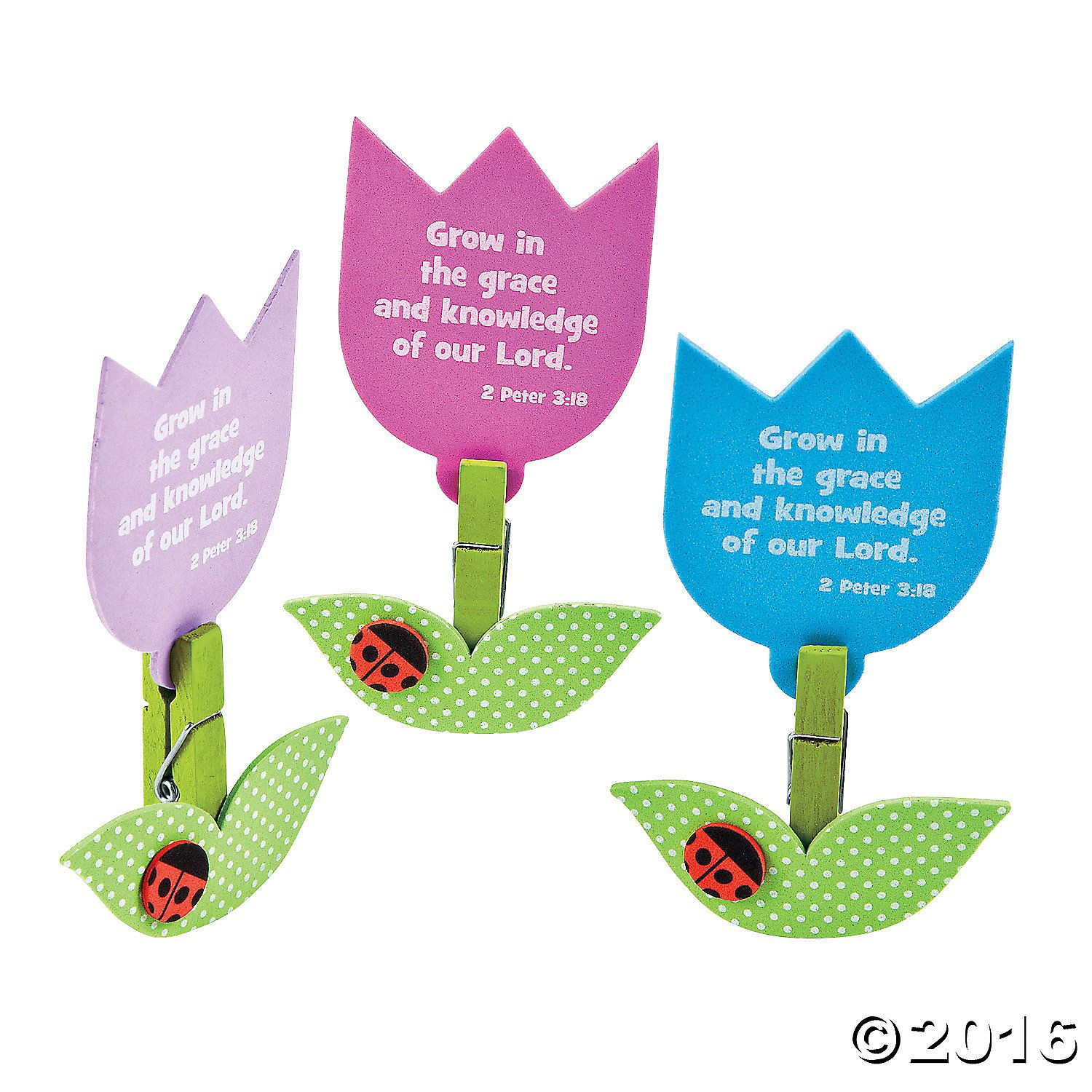 Searching for the perfect religious crafts to use during the Easter holiday season? If so, the 3D Growing in His Word Tulip Craft Kit are great for your VBS ...