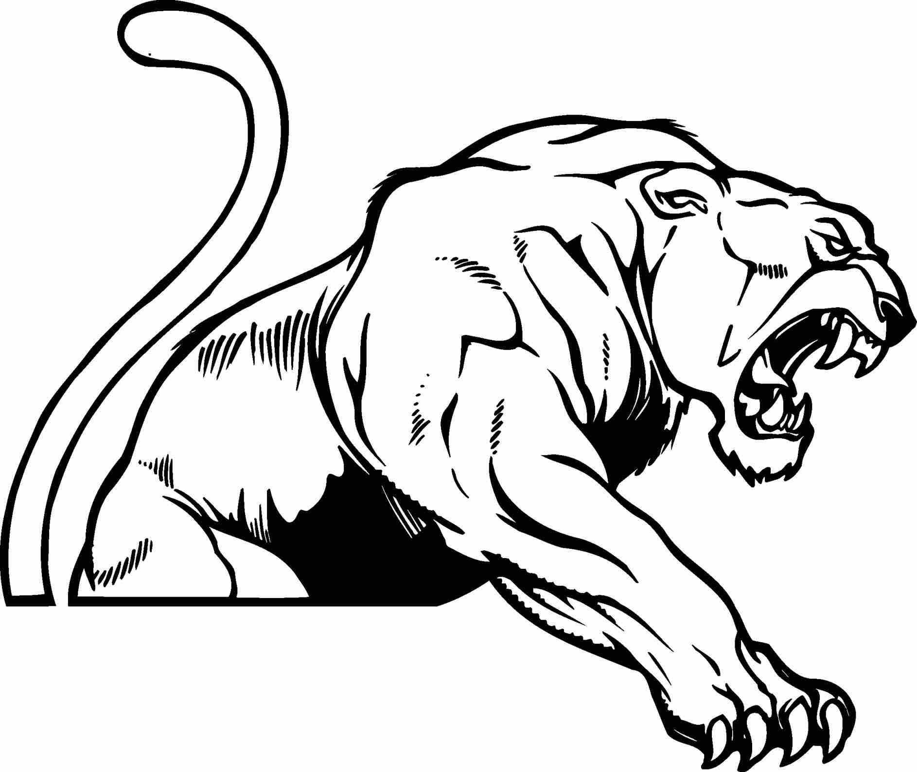 Free Of A Crouching Free Jaguar Clipart Black And White Of A Crouching Vector Sketch Walks Stock Vector Jaguar C Paw Print Clip Art Clipart Black And White Art