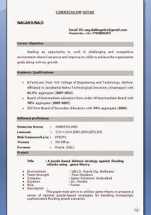 curriculum en vitae Sample Template Example of Excellent - resume vitae sample