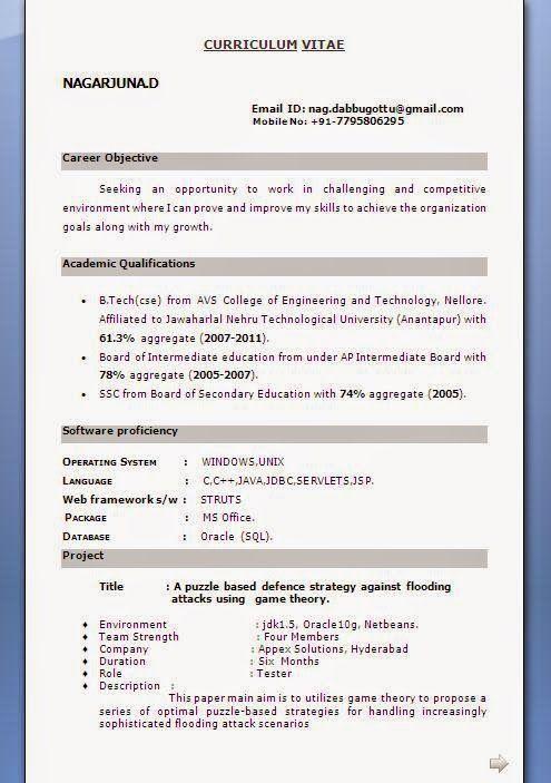 Curriculum En Vitae Sample Template Example Of Excellent Curriculum