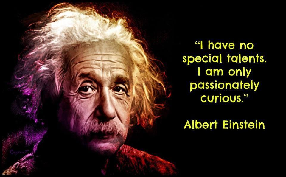 Jackiegerstein Ed D On Twitter Einstein Albert Einstein Albert Einstein Quotes
