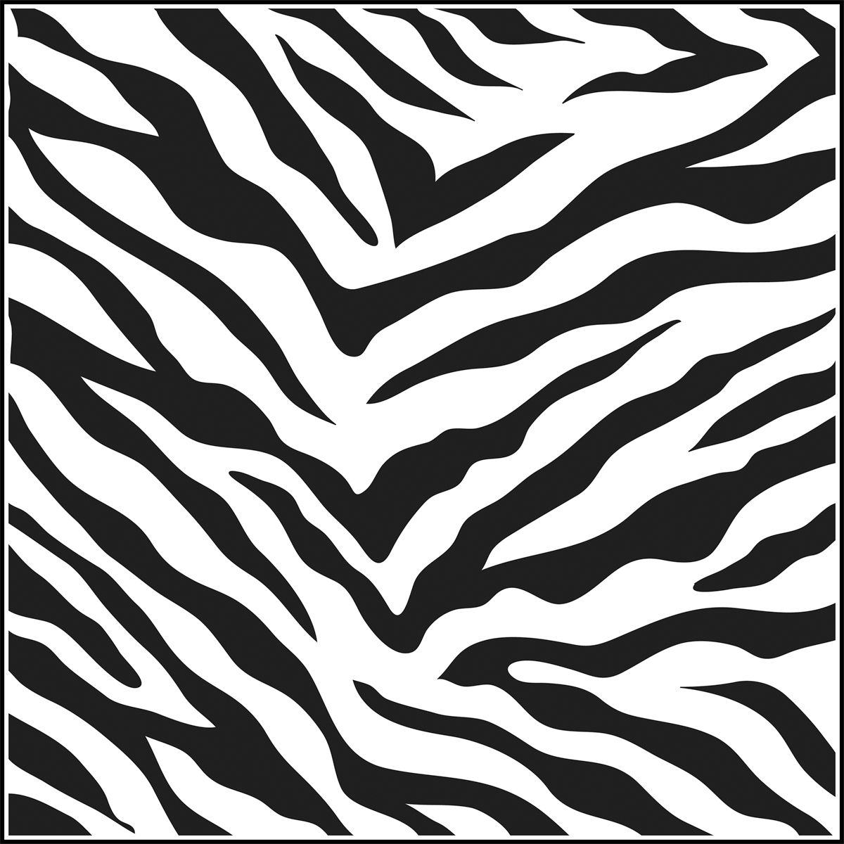 For Invitations I Took A Picture Of Zebra Print Then
