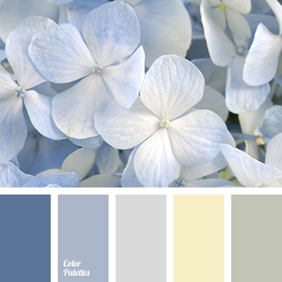 An Elegant Blue Palette For Office