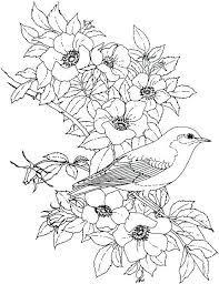 Bildergebnis Für Malvorlagen Blumen Für Erwachsene Digi Stamps
