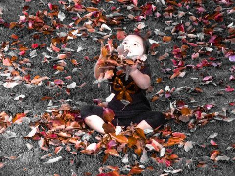 Rheanne playing in the leaves
