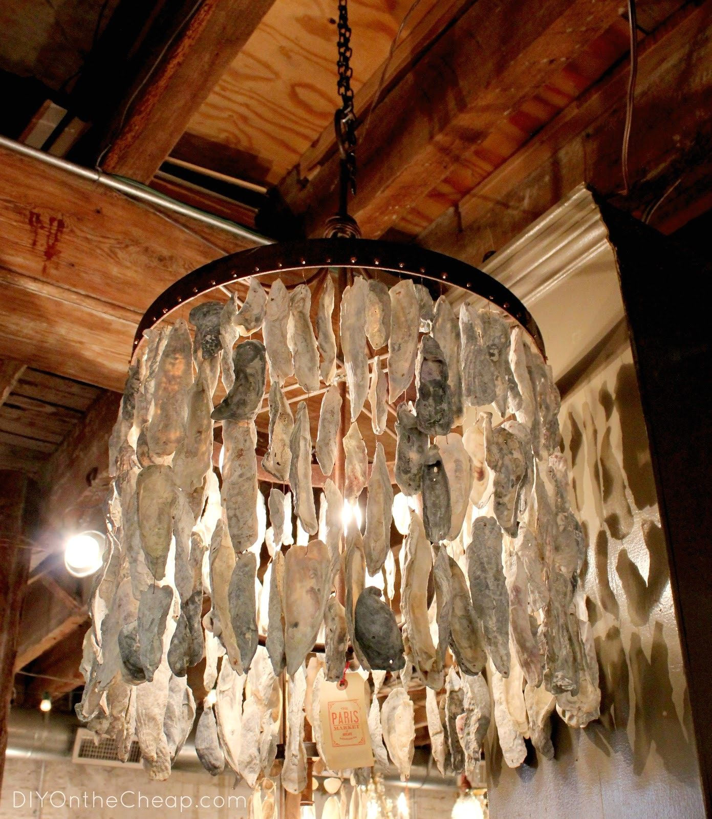 Diy Oyster Shell Chandelier And Lighting Project Week With