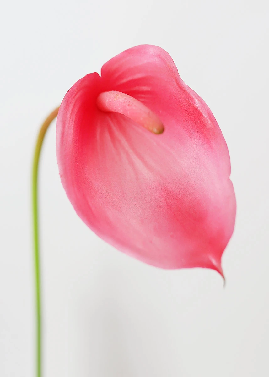 Pink Artificial Tropical Anthurium 23 5 Tall Anthurium Artificial Flowers And Plants Tropical Artificial Flowers