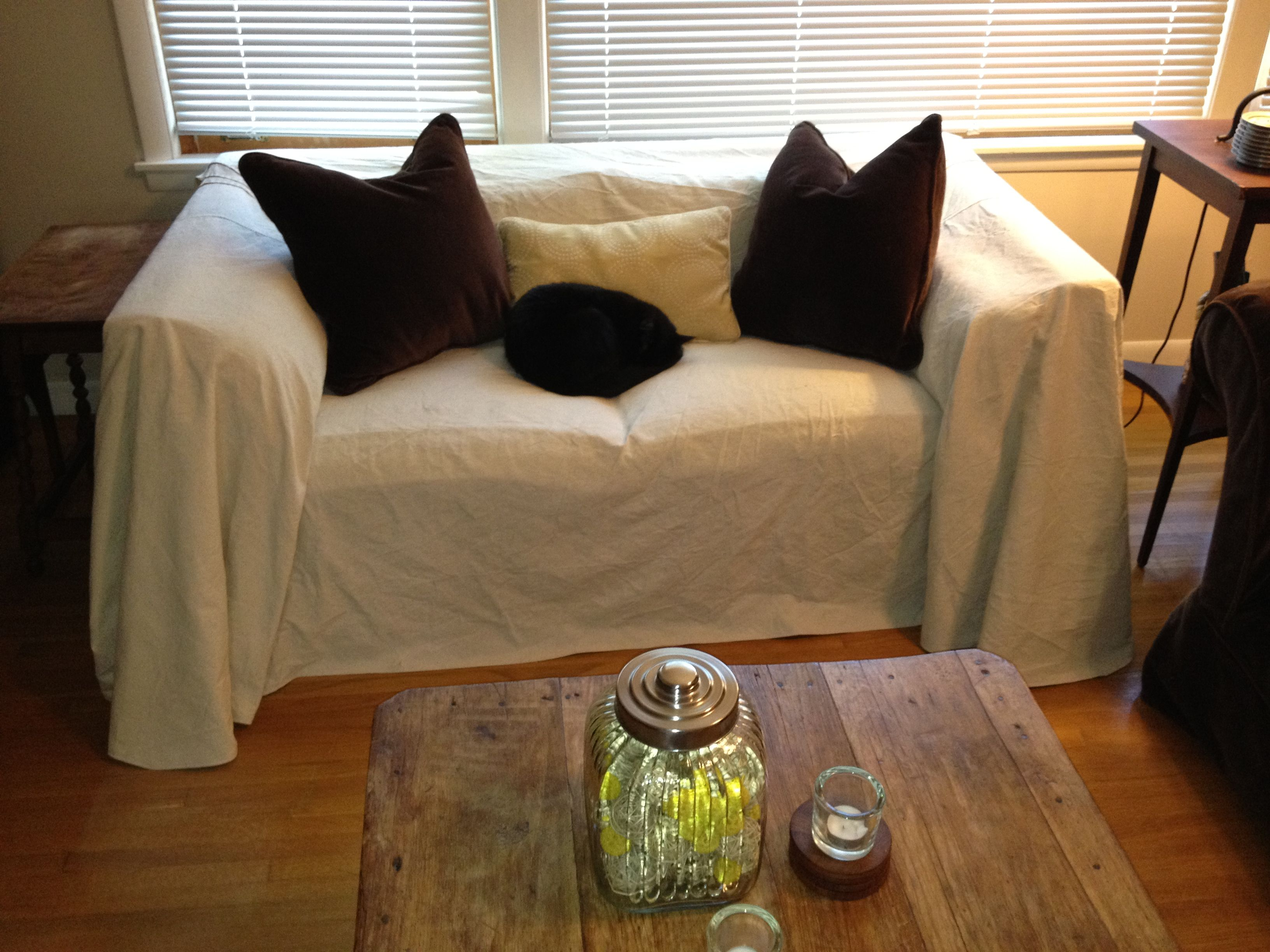 Design Diva A Couple of Cats and a Canvas Couch Cover Canvases