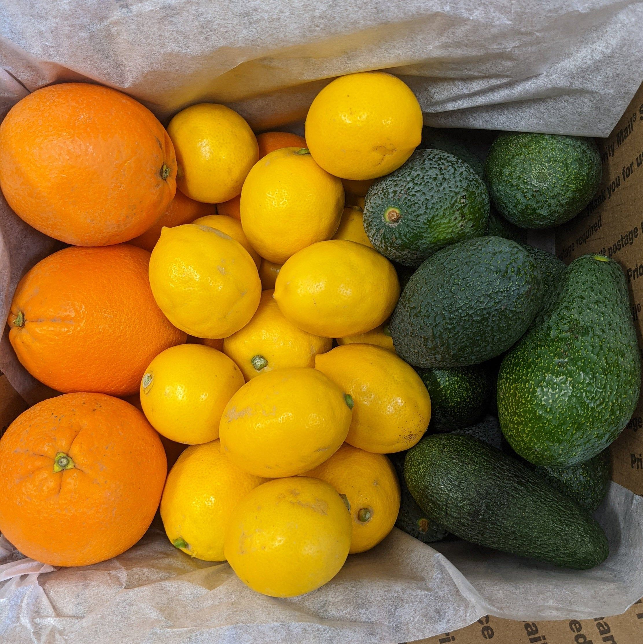 Cara Mia Bella Sale Gift Box 8+lbs Cara Cara Pink Navels Tangerines Lemons Healthy Delivered Fresh