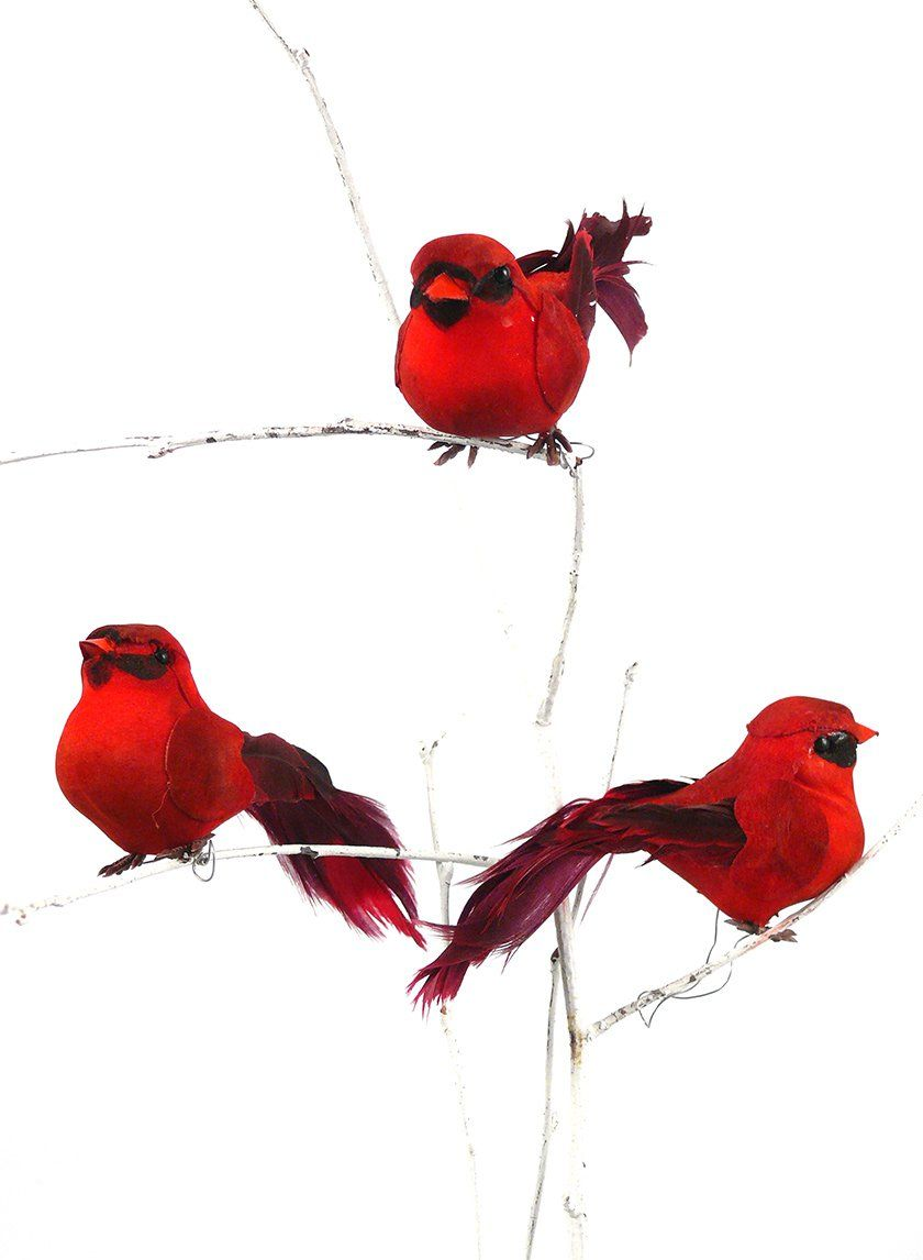 809202ce8d3 These cardinals have painted bodies with red feather wings and tails. Each  bird comes on