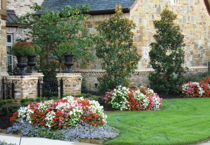 Allscapes Inc Irrigation Sprinklers Landscape Colleyville Texas Privacy Landscaping Magnolia Trees Landscape