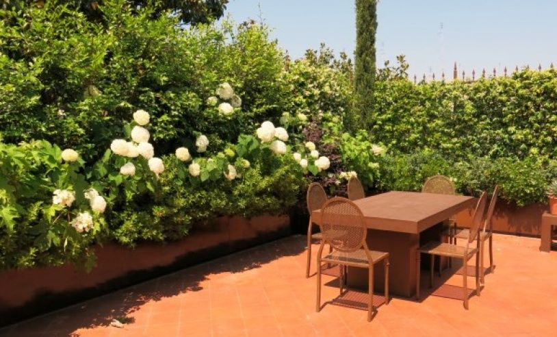 terrazze verdi - Cerca con Google | verde urbano | Pinterest