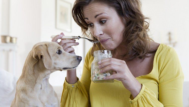 how to cook chicken for dogs with pancreatitis