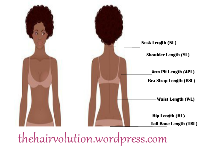 Track Your Hair Growth Cheveux Crepus Cheveux Crepus