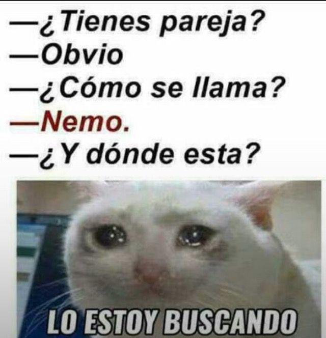 Pin By Brenda De Leon On Memes New Memes Funny Spanish Memes Memes En Espanol