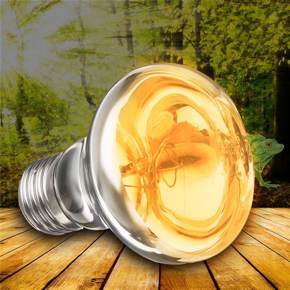 Us 3 38 E27 25 40 50 60 75 100w R63 Amphibian Uva Halogen Lamp Heat Reptile Light Bulb Ac220 240v Led Light Bulbs From Lights Lighting On Banggood C Amphibians Reptile Lights