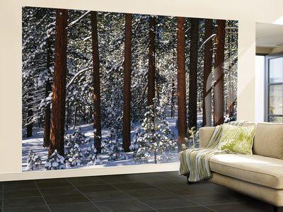 Nature paysages ravissantes toiles et affiches livraison gratuite dispo décorations tendances et classiques pour votre intérieur