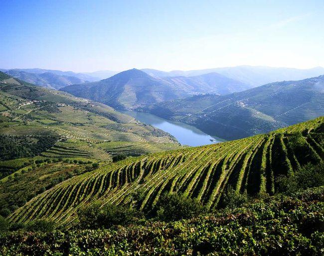 Terrazas Fluviales Buscar Con Google Viajes Portugal Y