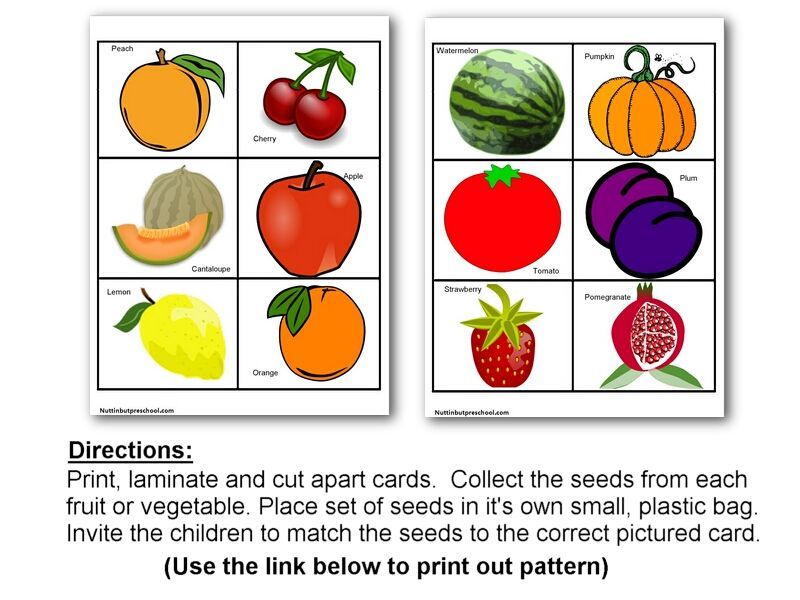 seed matching game do with actual seeds and fruitsveggies