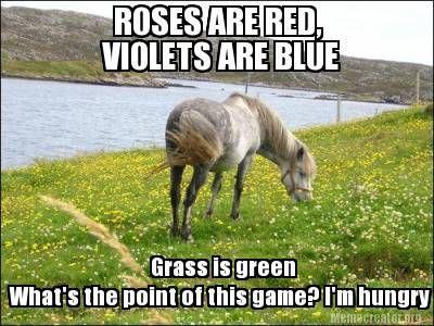 Rfd Tv Officialrfdtv Horses Horse Jokes Animal Quotes