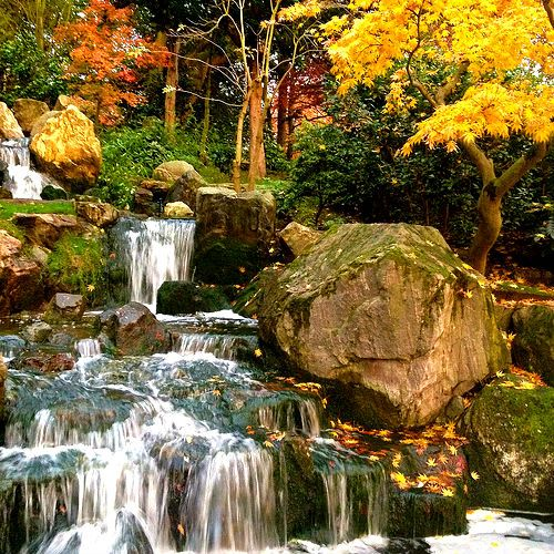 london holland park the colours of autumn painting the waterfall at the japanese garden in - Japanese Garden Cherry Blossom Paintings
