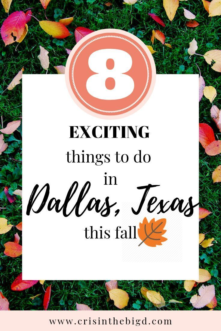 Fall in Dallas, Texas Top Things To Do Dallas things