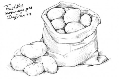 How to draw potatoes step by step