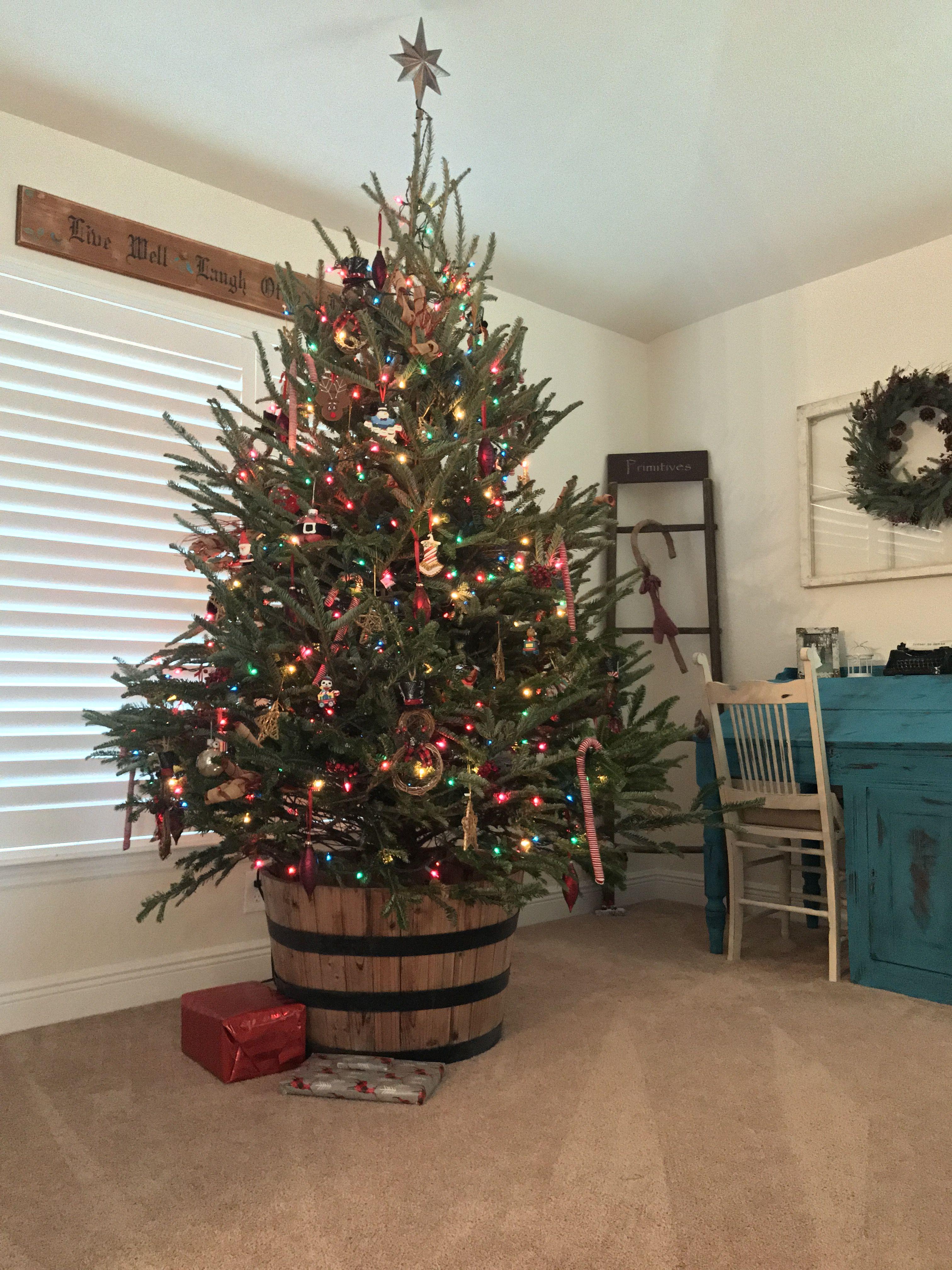 Christmas Tree In Barrel