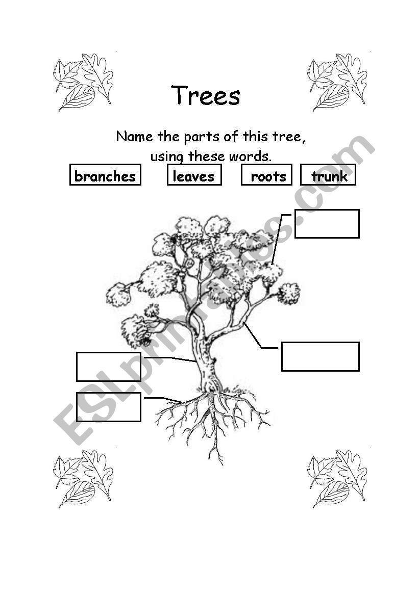 Parts Of A Tree Worksheet Kindergarten Worksheets Printable Kindergarten Worksheets Kindergarten Subtraction Worksheets [ 1169 x 821 Pixel ]