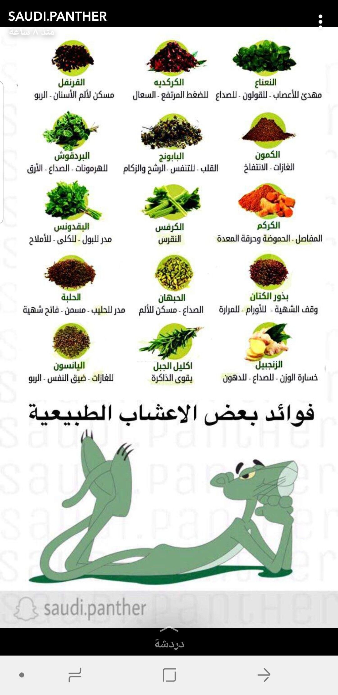 Pin By Nonosaad4 On وصفات واكثر Green Beans Vegetables Food