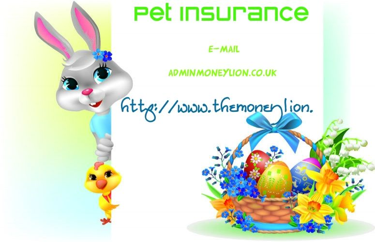 Http Www Themoneylion Co Uk Insurancequotes Lifestyle Privatehealthinsuranceuk Health Insurance Pet Insurance Health Insurance Uk Pet Health