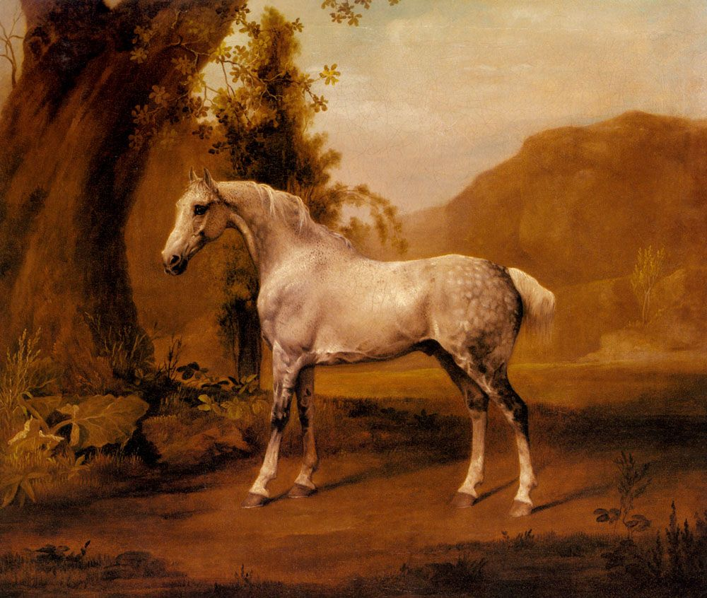 A Grey Stallion In A Landscape - George Stubbs- WikiPaintings.org ...