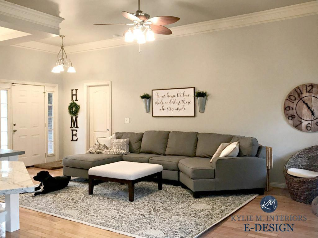 Sherwin Williams The 10 Best Gray And Greige Paint Colours Kylie M Interiors Living Room Grey Dark Grey Couch Living Room Paint Colors For Living Room