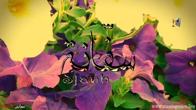 معنى اسم سفانة وصفات حاملة هذا الاسم Safana Plants Leo