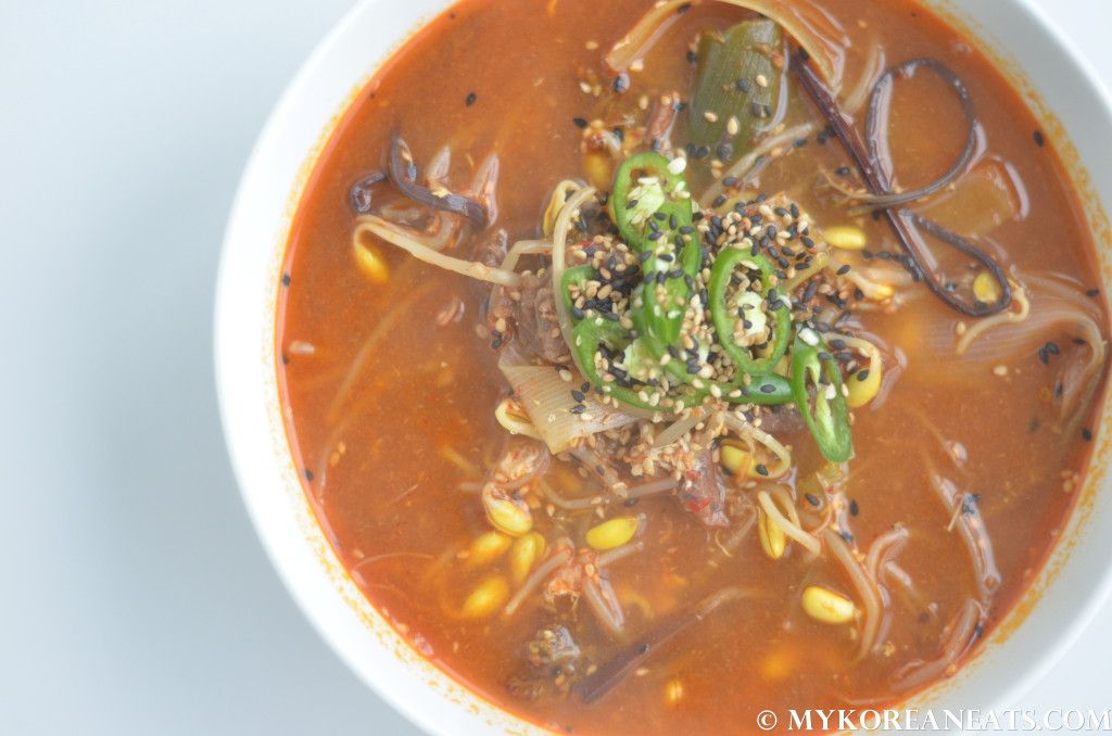Yukgaejang 육개장 (Spicy Beef Soup with Vegetables) - MYKOREANEATS