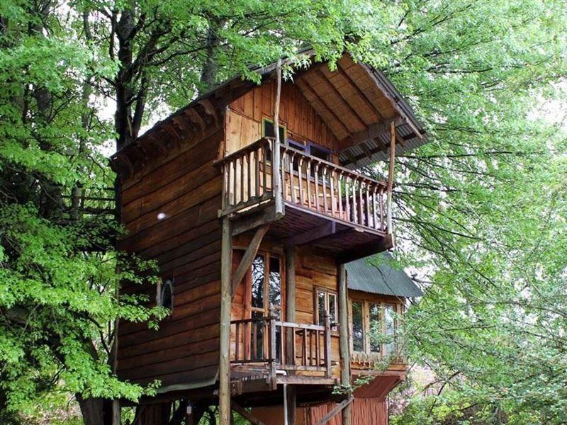 Sycamore Avenue Treehouses   Mooi River, Drakensberg   House styles