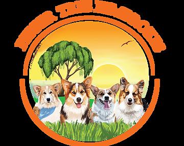 Pepper Tree Pembrokes California Corgi Breeders Corgi Breeders Corgi Puppies For Sale Pembroke Welsh Corgi Puppies