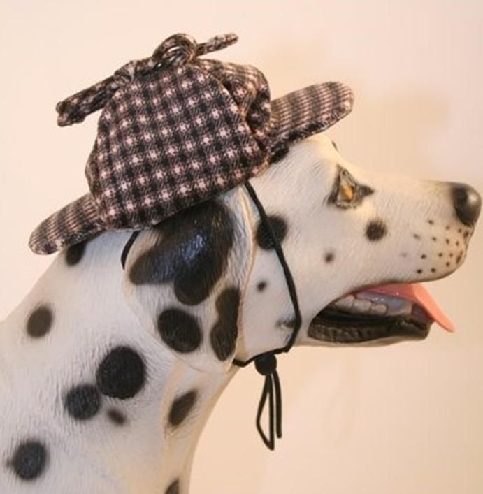 Pin On Whimsical Costumes For Dogs