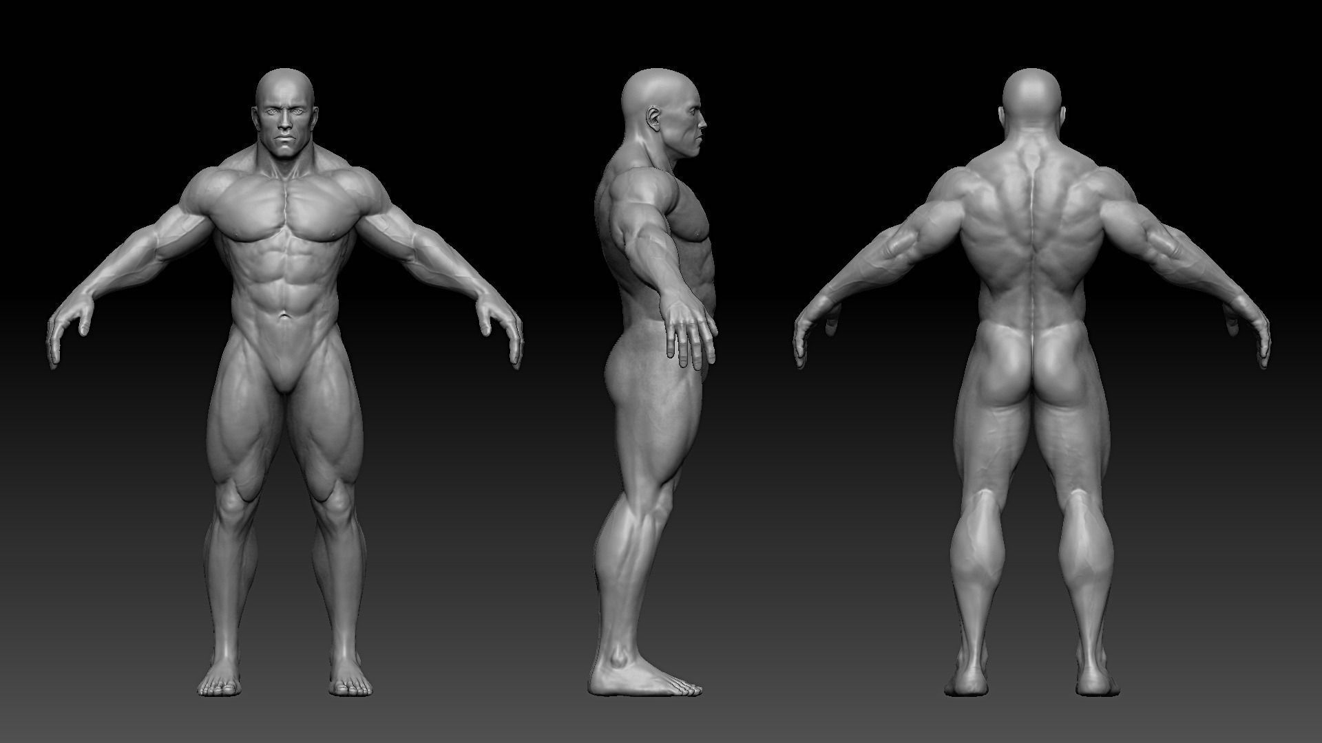 Pin by Rolando Herrera on Character model reference board ...