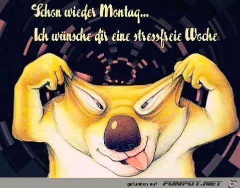 Schon Wieder Montag Schoner Montag Montag Spruche Und
