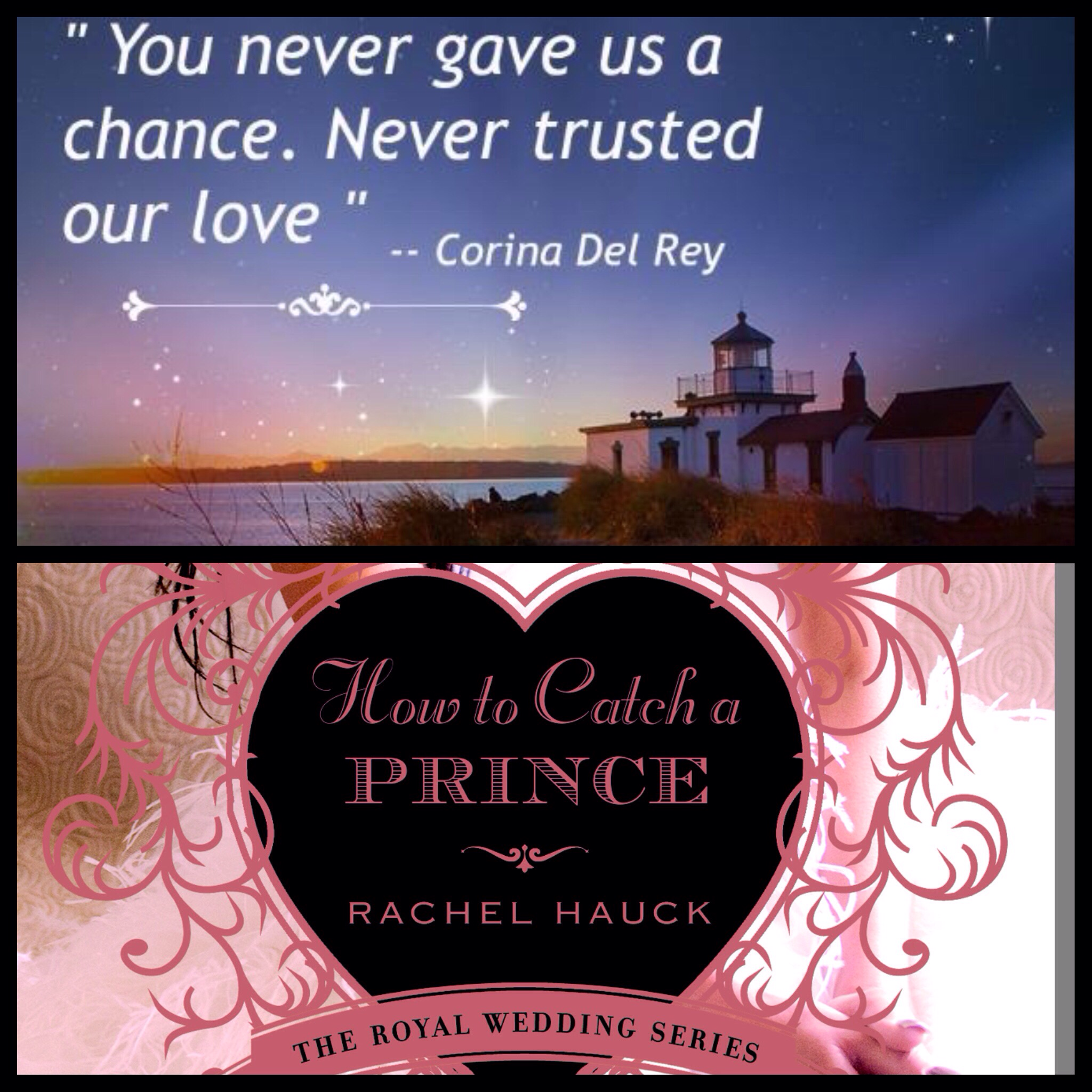 """Book quote from """" How to Catch A Prince"""" Author Rachel"""