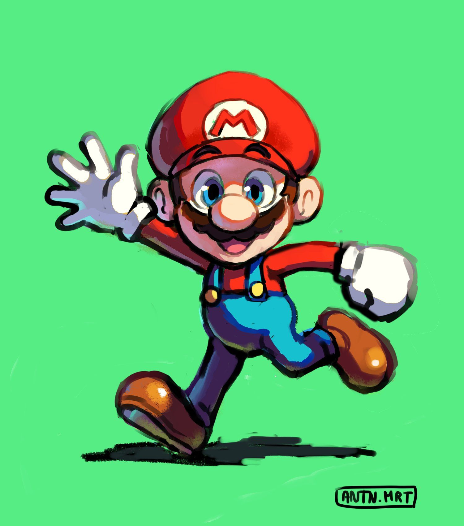 Mario Brothers Picture