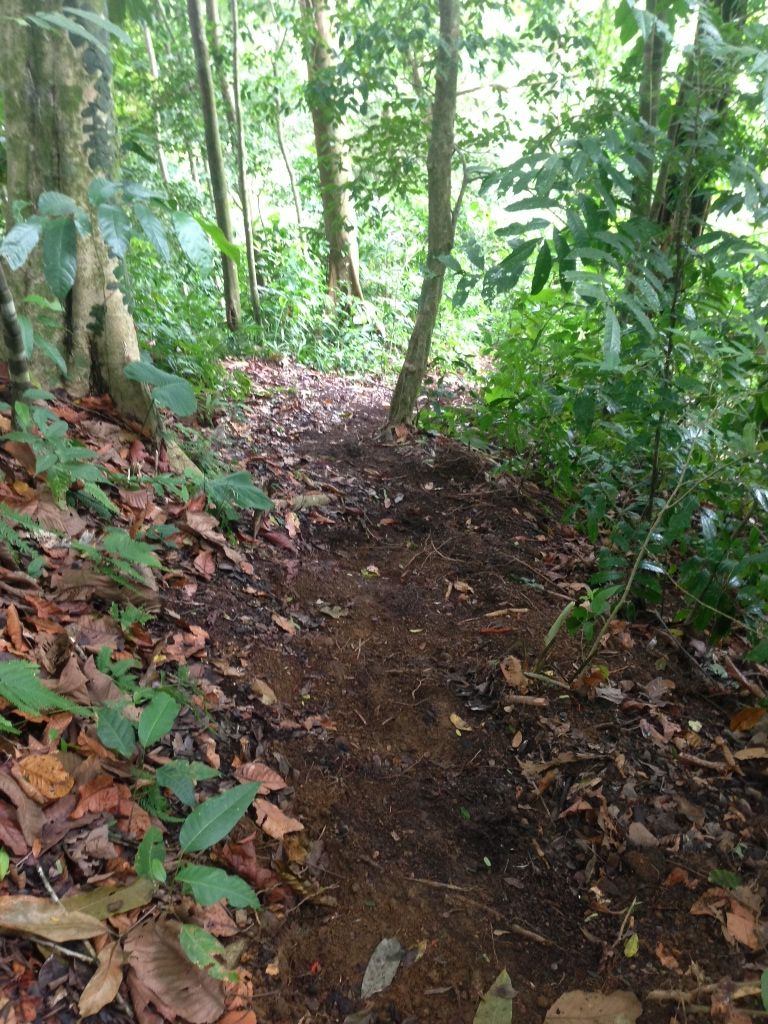 The trail is nearing completion in Las Villas de San Buenas. Private hiking in #costarica