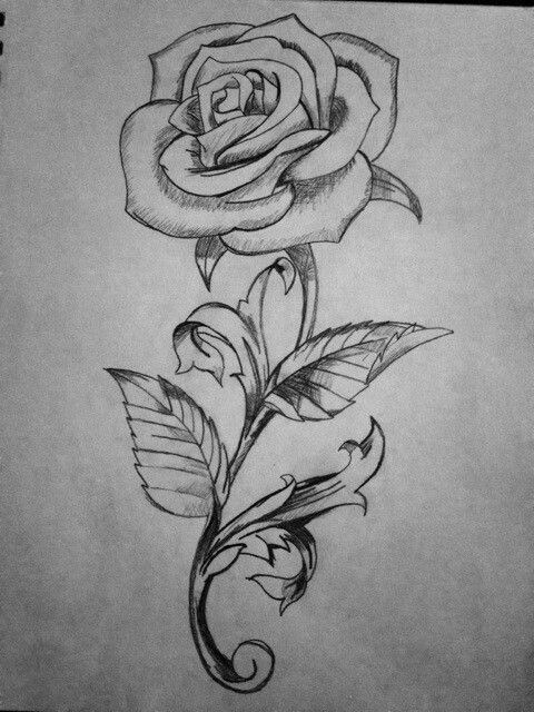 19 Best Flower Tattoos Ideas Flower Drawing Roses Drawing Rose Drawing