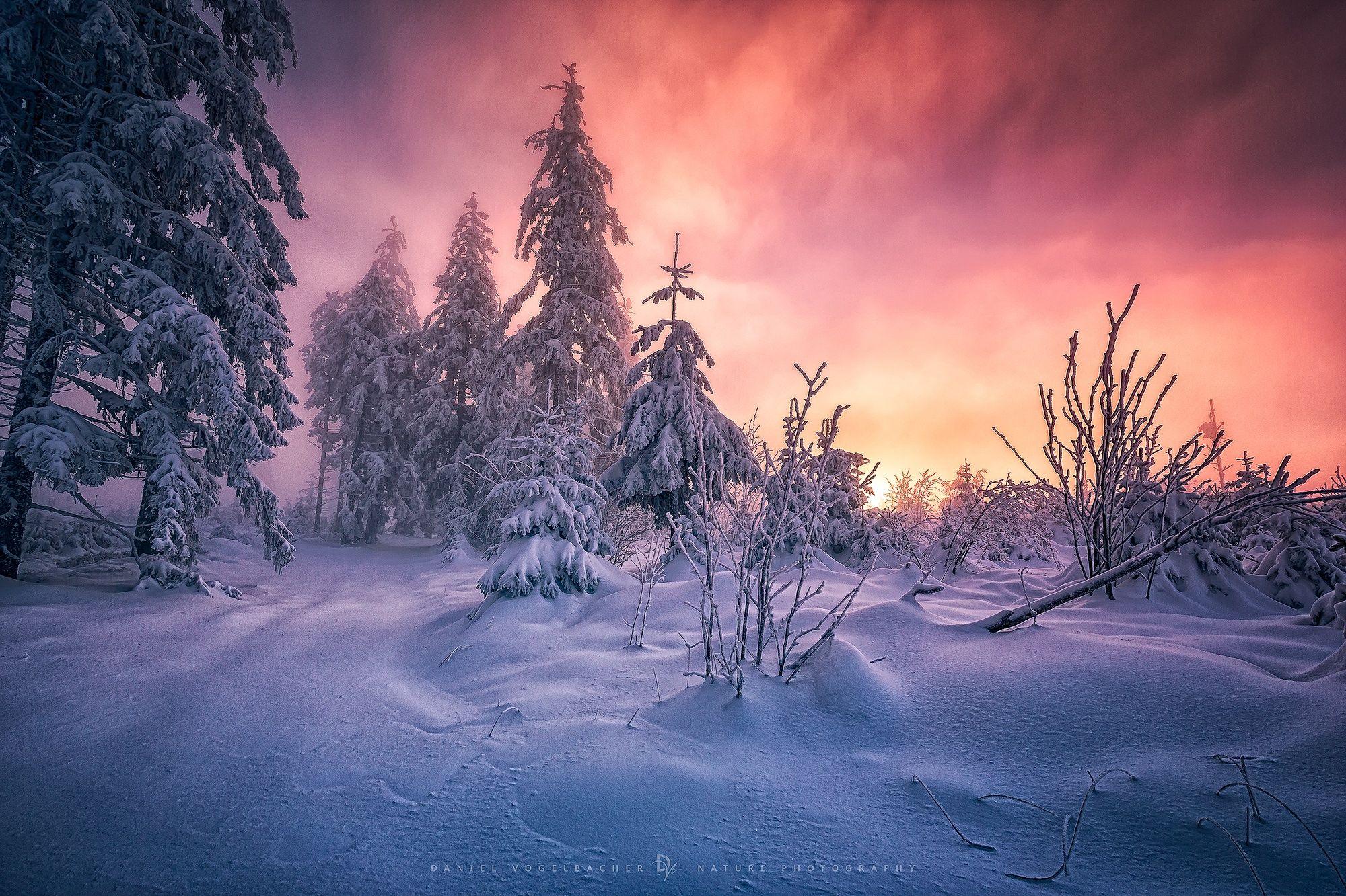 Best Of 2014 Top 10 People Photos Winter Landscape Photography Winter Landscape Forest Photography
