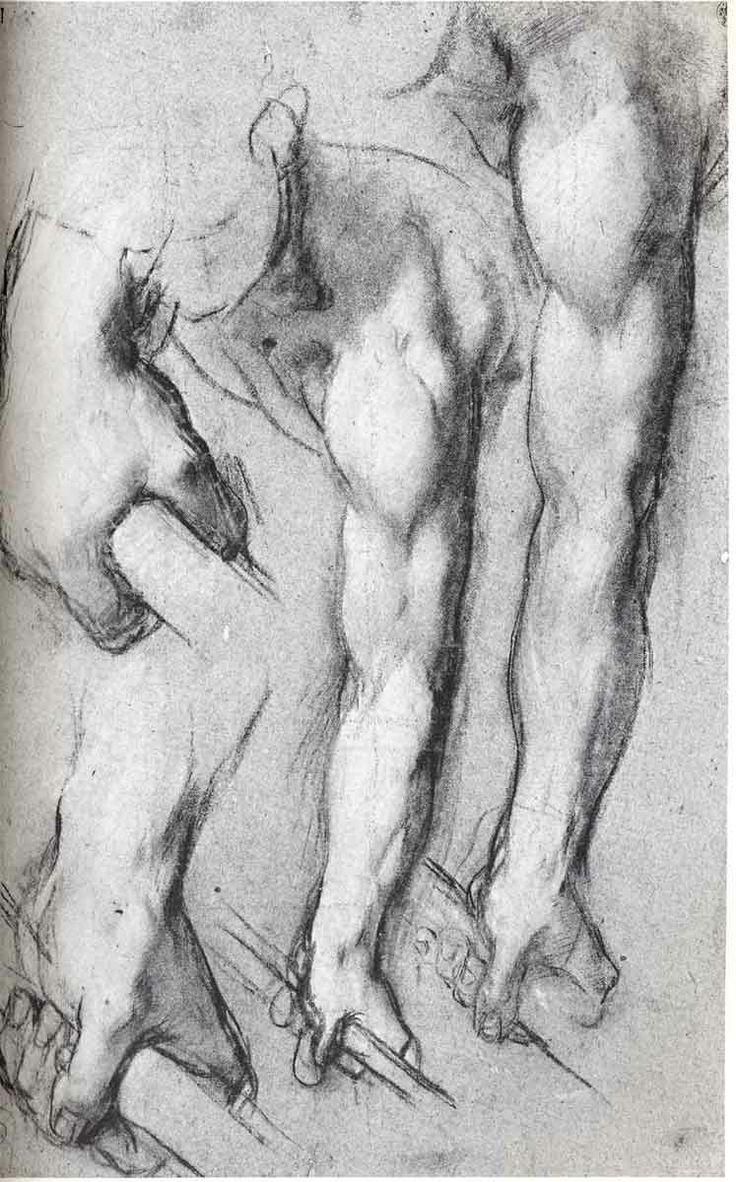 Léonard de Vinci | Sciences - Léonard de Vinci | Pinterest