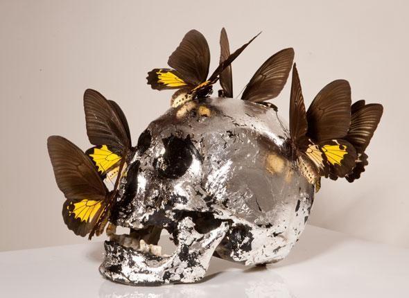 Préférence Philippe Pasqua, Crâne aux papillons. Crédit : Jean-Alex Brunelle  MG33
