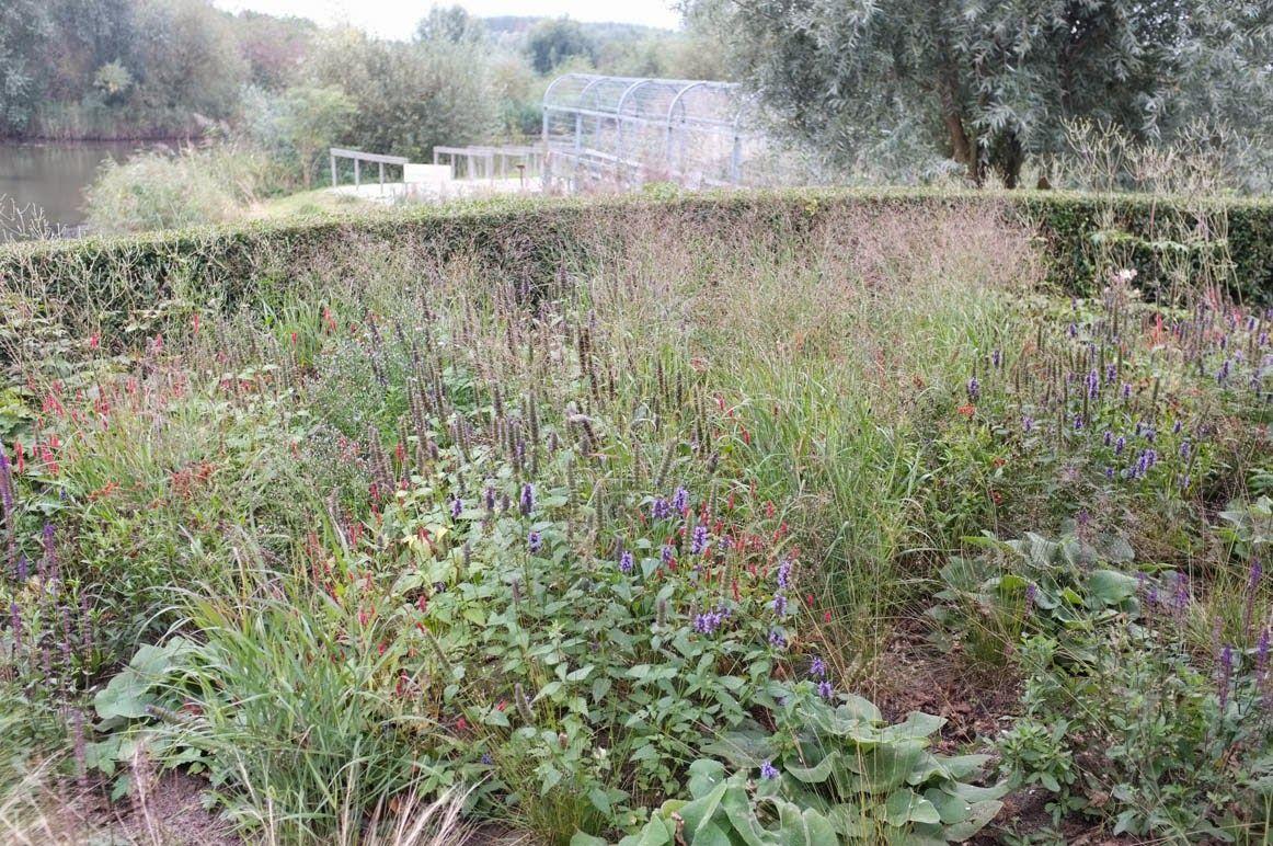 Kwekerij De Kleine Plantage
